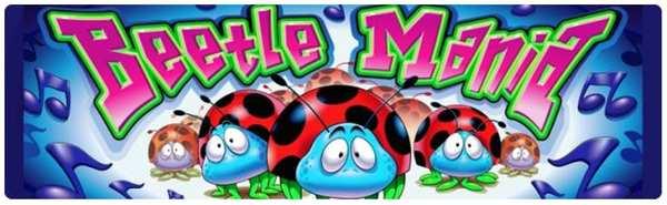 beetle_mania-2017