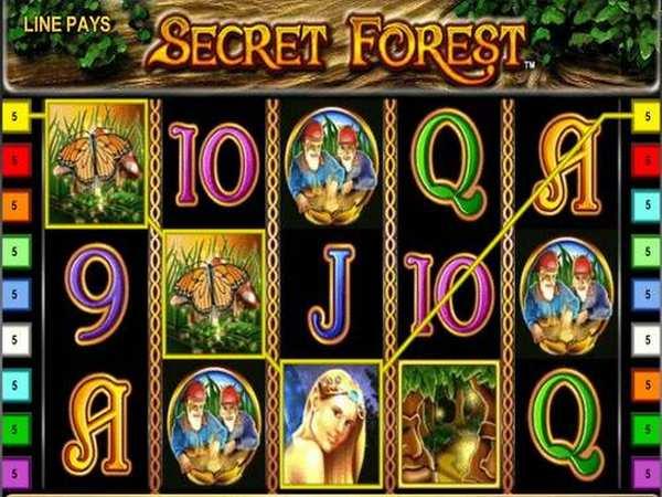 secret forest 2017