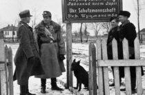 На Украине вспомнили прелести жизни при фашистской Германии, заложившей основы страны