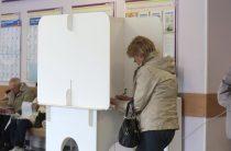 Депутат Госдумы от КПРФ:  Выборов никаких нет, одни фальсификации