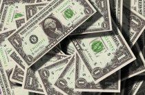 Следственный комитет перевел Яшину 12 тысяч долларов
