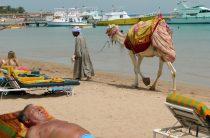 После возобновления авиасообщения с Каиром египетские курорты остались «недоступными» россиянам