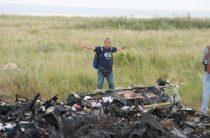 Главным виновником крушения MH17 признали Украину