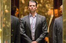 Сын Трампа тайно переписывался с WikiLeaks