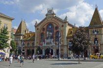 Нож в спину: в Будапеште прошла акция за самоопределение Закарпатья
