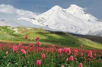 Отношения с Арменией развиваются