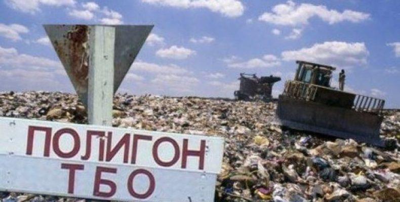 Боремся за экологию и чистоту.