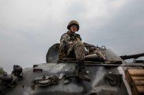 «Дикое поле»: украинцы призвали Киев стереть Донбасс