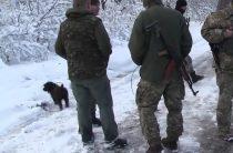 17 убитых: украинские силовики перестреляли друг друга под Горловкой