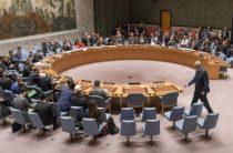 Россия отреагировала на блокировку в ООН резолюции по коронавирусу