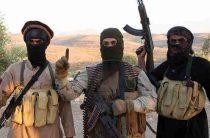 Турцию упрекнули в сотрудничестве с игиловцами для войны с курдами