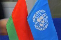 Белоруссия объяснила принципиальный отказ поддержать украинскую резолюцию по Крыму