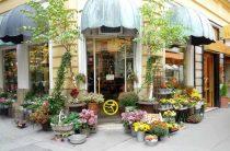 Как открыть цветочный магазин с нуля: рекомендации и советы