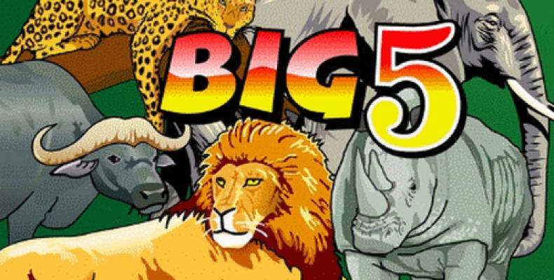 Редкий игровой автомат «Big 5» – путешествие в дикий мир Африки!