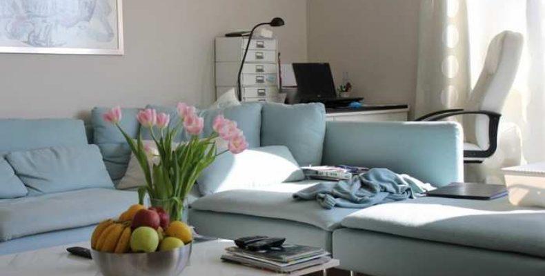 Плюсы аренды квартиры через агентство
