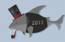 Выбор трейдера Форекс для инвестирования